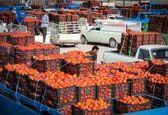 ادعای روسیه مبنی بر صادرات محصولات سایر کشورها با نام ایران بیاساس است/ احتمال طرح موضوع از سوی رقبا برای کنار زدن ایران از بازار روسیه