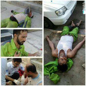 گرما پاکبانان بوشهر را راهی بیمارستان کرد +عکس