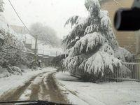 بارش برف مناطق کوهستانی استان تهران را فرا گرفت