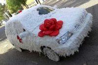 ماشین عروس مرغی +عکس