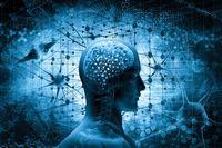 مغز در طول افسردگی عملکرد ضعیفتری دارد، اما میتواند بهبود یابد