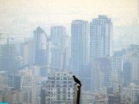 نیمی از جمعیت ایران با آلودگی هوا درگیر هستند