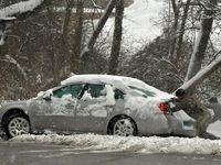 برف در آمریکا حداقل ۵ قربانی گرفت