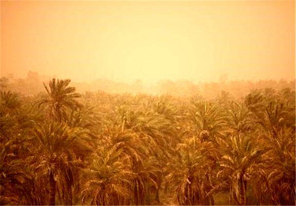 گرد و خاک و وزش باد در راه