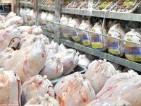 چرا قیمت مرغ باز هم افزایش یافته؟