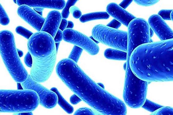آلودگی آب شرب اهواز به وبا صحت ندارد