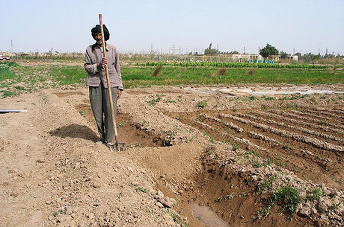 احیای ۲۹۵ هزار هکتار از اراضی خوزستان