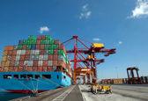 نیازسنجی تجار در بازار جهانی