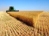 نارضایتی کشاورزان از اقدامات دولت