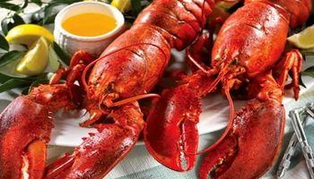 صادرات 227 تنی خرچنگ