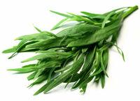 به جای نمک از این سبزی استفاده کنید!