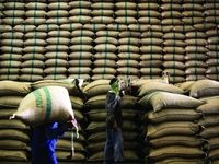 مجوز صادرات برنج آمریکا به چین صادر شد