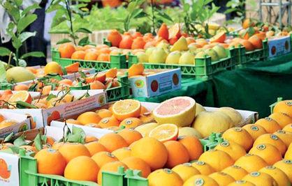 ثبات در قیمت محصولات کشاورزی