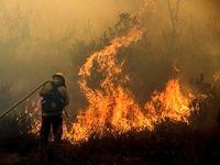 ادامه آتشسوزی در جنگل های کالیفرنیا +تصاویر