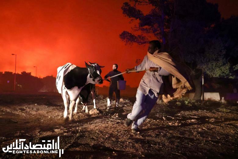 برترین تصاویر خبری هفته گذشته/ 22 مرداد