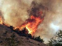 آتش به جان ارسباران افتاد +تصاویر