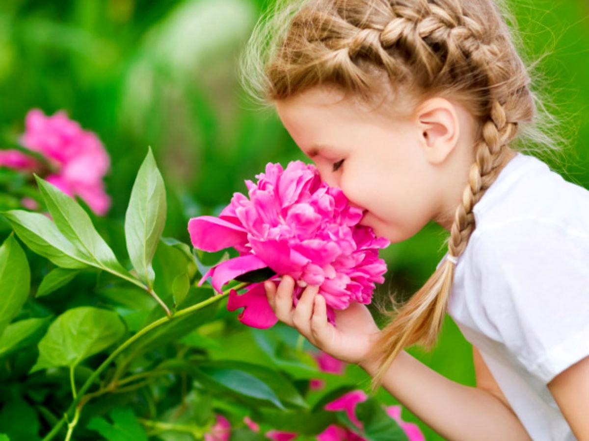 بوها روی جسم و ذهن شما تاثیرگذارند