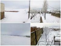 برف مدارس برخی شهرهای آذربایجان شرقی را تعطیل کرد