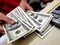 قیمت دلار ثابت نخواهد ماند/ تزریق ارز راهکار موقتی کنترل نرخ
