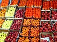 رشد ۱۲درصدی صادرات میوه