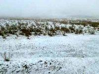 بارش برف پاییزی در ارتفاعات چالدران +عکس