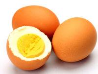 دلایل گرانی تخم مرغ در بازار بررسی شد