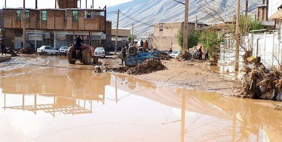 افزایش سهمیه گوشت و مرغ مناطق سیلزده خوزستان