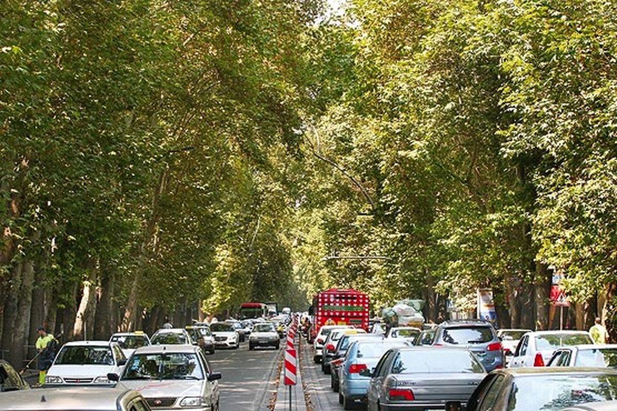 افزایش کشش نهرهای زیرین طویلترین خیابان تهران