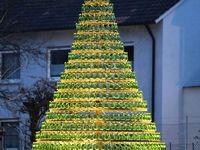 خاصترین درختان کریسمس +تصاویر