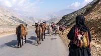 ماجرای کوچ خارجی ها در ایران + عکس