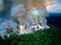 رایزنی برزیل با آمریکا واسرائیل برای اطفای حریق در جنگلهای آمازون