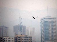 عامل اصلی آلودگی هوا در کشور مشخص شد
