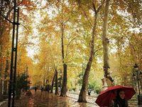 باران، طلسم یک هفتهای آلودگی هوا را شکست