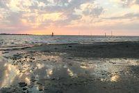 خلیج گرگان نفسهای آخر را میکشد
