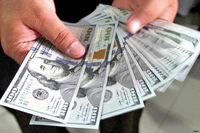 کشف ۳هزار قطعه دلار تقلبی