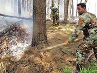 آتش، دامن جنگلهای هیرکانی را هم گرفت