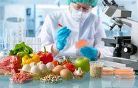 تشکیل کارگروه پشتیبانی از تولیدات در صنایع غذایی