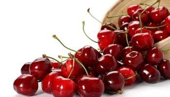 غذاهایی که مانع از چاقی شکمی میشوند