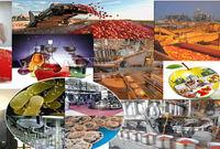 پیشبینی رشد ۲۰ درصدی صادرات صنایع غذایی