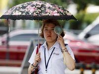 روش جالب کرهایها برای فرار از گرما