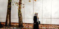 پاییز در خیابانهای تهران +عکس