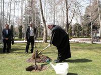 روحانی: ضرورت استفاده از درختان مثمر در درختکاری و جنگلکاری/ مردم همچنان به همکاری با وزارت بهداشت برای غلبه بر کرونا ادامه دهند