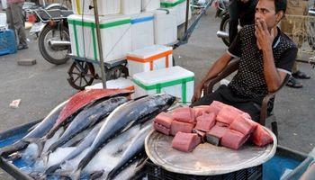 ایرانیها ماهیخورتر شدهاند