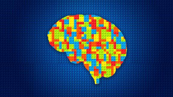 ۱۰نکته مهم درباره مغز