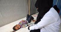 افزایش قربانیان وبا در یمن