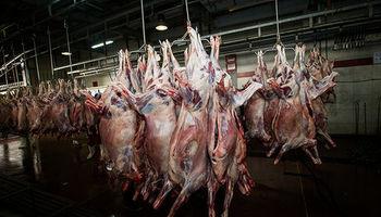 قیمت گوشت قرمز در بازار؛ ۵۰تا ۱۲۰هزار تومان