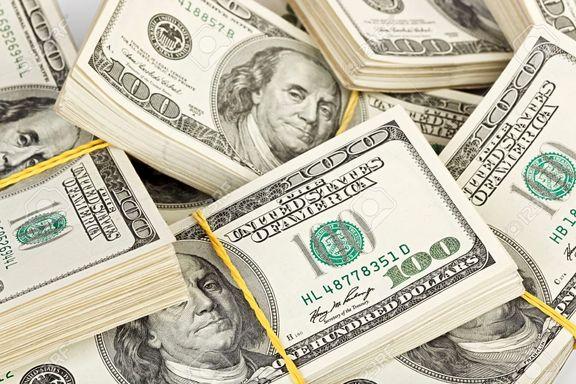 ۱۴ میلیارد دلار؛ تخصیص ارز برای واردات کالای اساسی