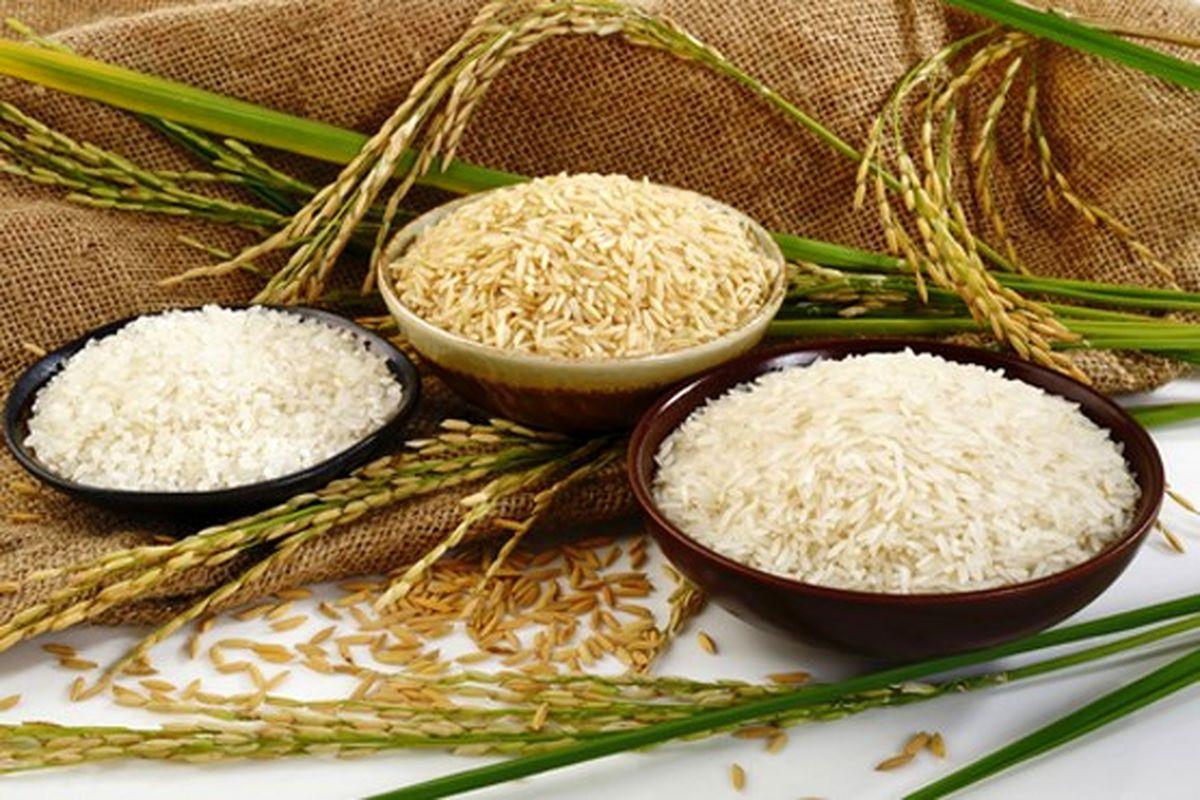 افزایش قیمت برنج؛ از شایعه تا واقعیت