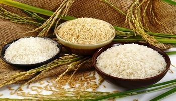 برنج تقلبی چیست و چگونه آن را تشخیص بدهیم؟!