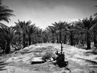 گمشدن کوتاهمدت رد خشکسالی